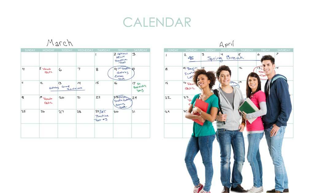 Image of educational design zero ghosting writable Monthly Calendar wall covering